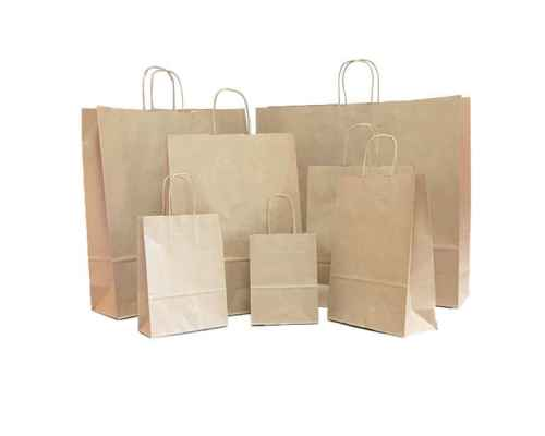 Paper Bag - Craft